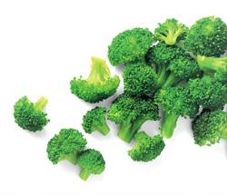 Brokolice velká 4/6 ARDO