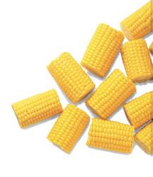 Kukuřičné klasy půlené ARDO